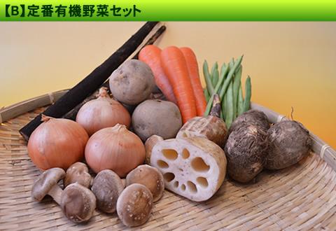 10月の有機野菜セット