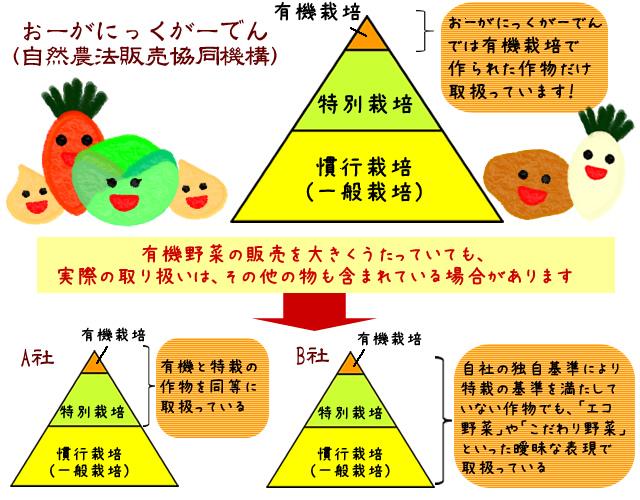 他社比較 ピラミッド図