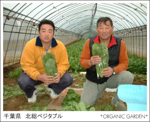 有機野菜生産者:北総ベジタブル