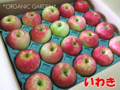 有機りんご「いわき」