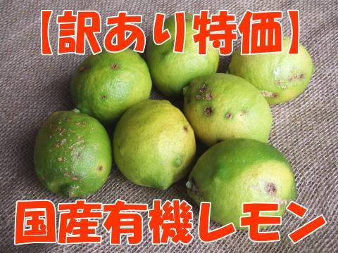 【訳あり】国産有機レモン
