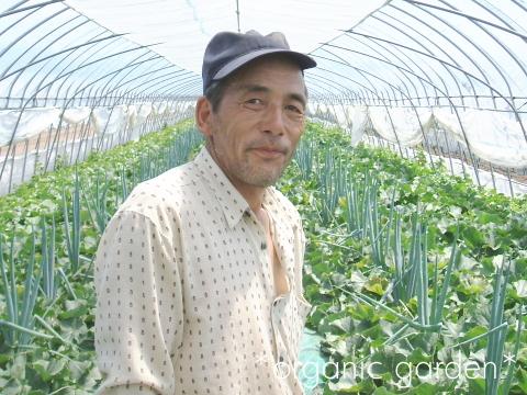 北海道中富良野の有機メロン農家さん