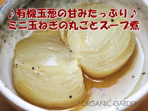 有機ミニ玉ねぎの丸ごとスープ煮01