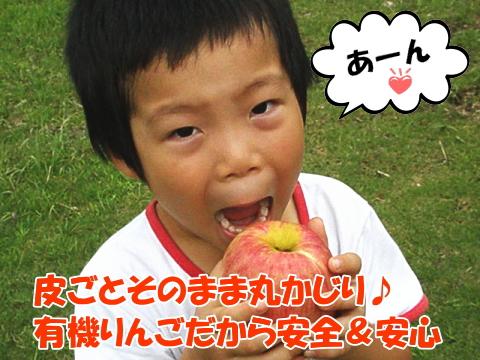 有機りんご丸かじり!