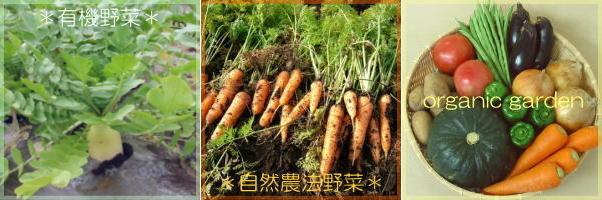 有機野菜・自然農法野菜のお店