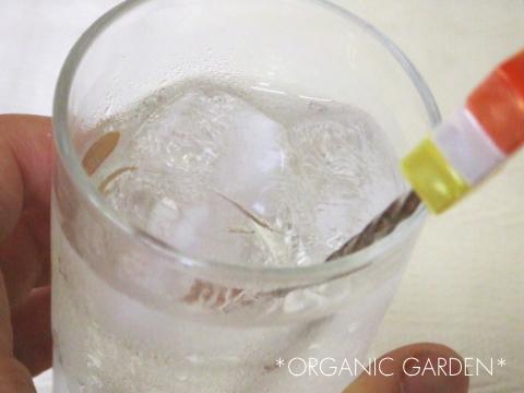 梅ジュースの作り方14