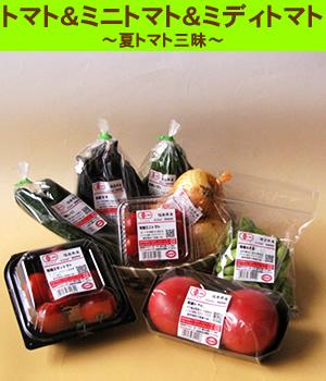 有機野菜お試しセット【B】