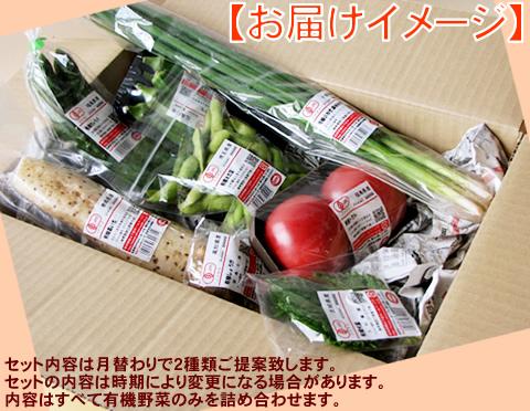 有機野菜お試しセット
